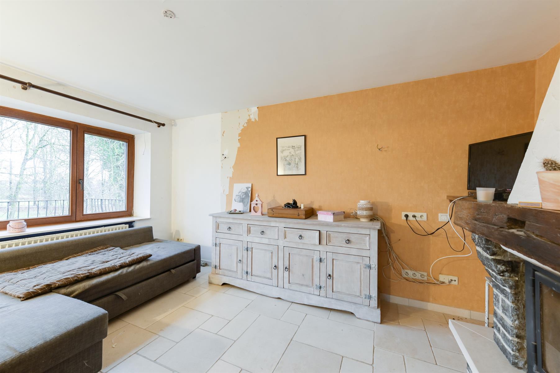Buitengewoon huis - Tellin - #3934822-43